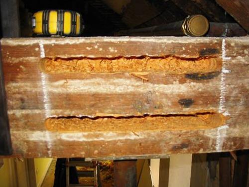 timberrepair-2